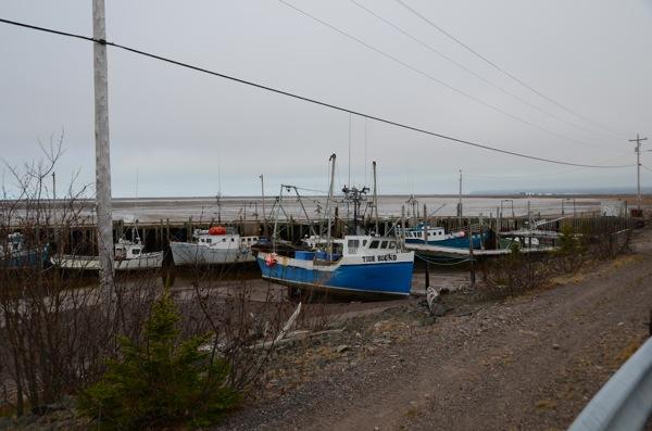 Nova Scotia Low Tide