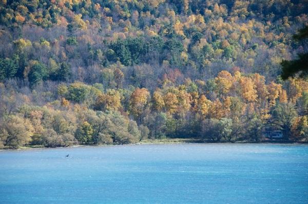 LakeOswegoFoliage2