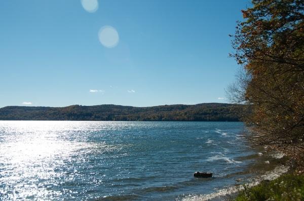LakeOswegoFoliage3