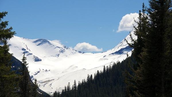 GlacierNPWildJacksonGlacier