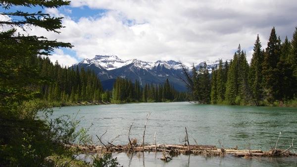 BanffNPBowRiver3