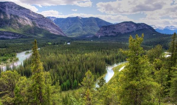 BanffNPBowRiverValley3