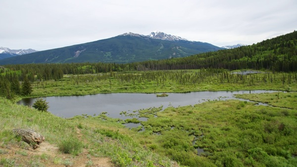JasperNPPatriciaLakeSlough