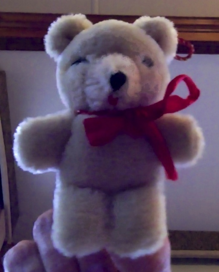 Winston Bear