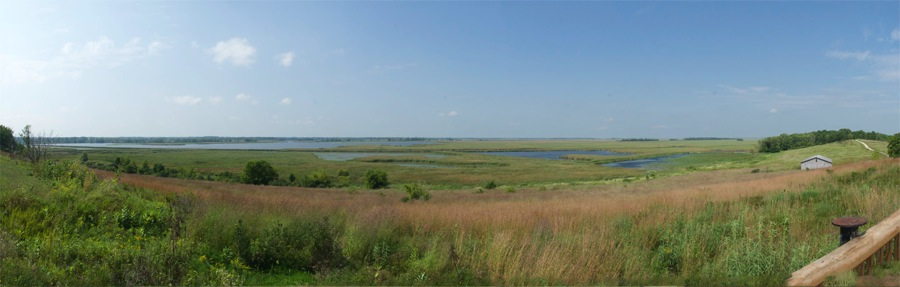 HoriconMarshNWR20140829small