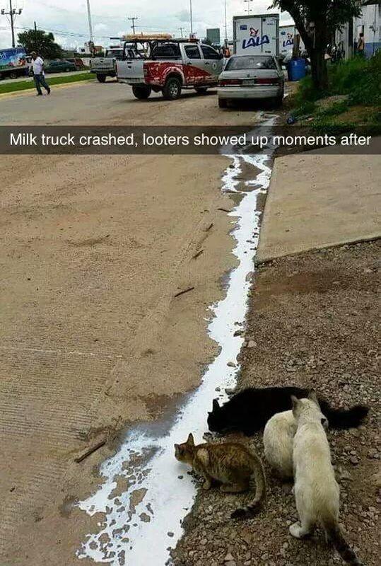 MilkTruckCrash