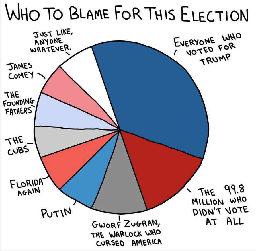 Election Blame