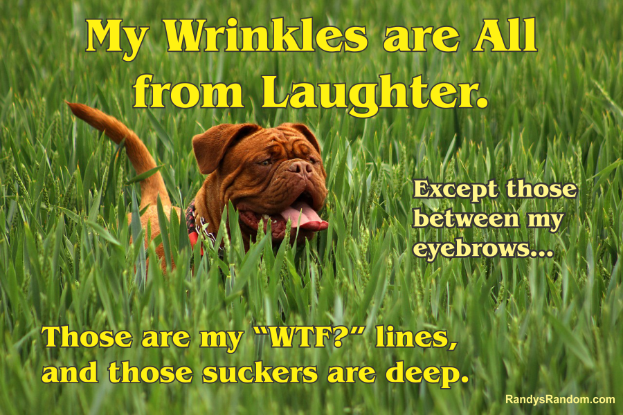 WrinklesWellEarned