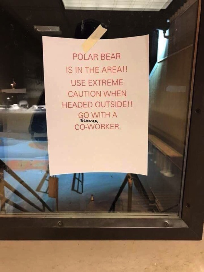 BearWarning