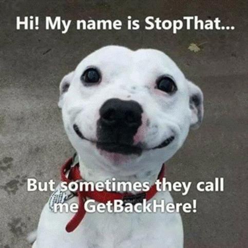StopThat
