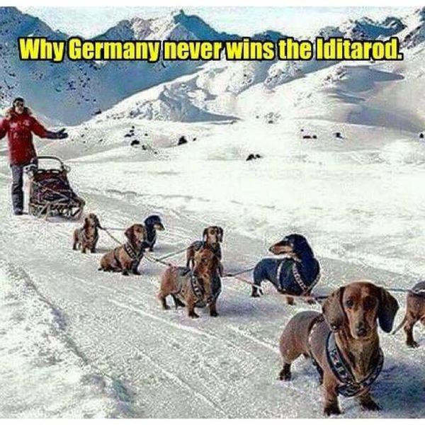 GermanyIditarod