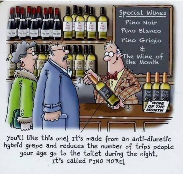 WineForOldPeople