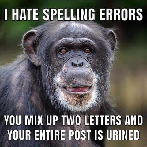 SpellingError2