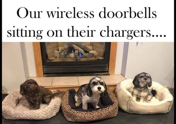 WirelessDoorbells