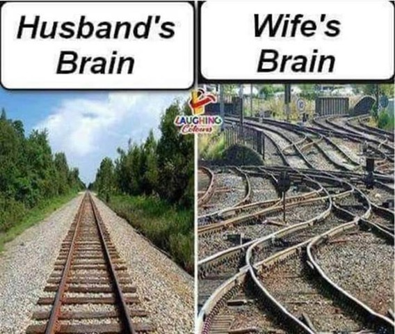 HusbandWifeBrains