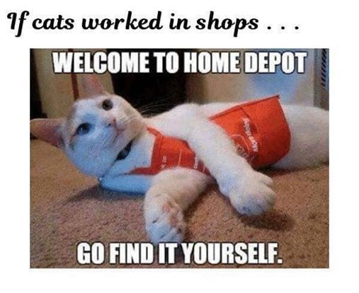 HomeDepotCats
