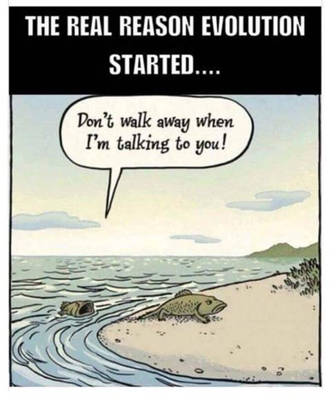 EvolutionStart