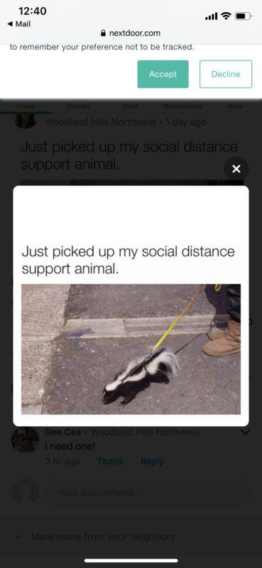 SocialDistanceSupportAnimal
