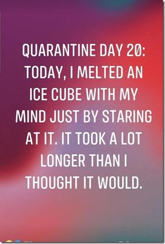 QuarantineIceCube