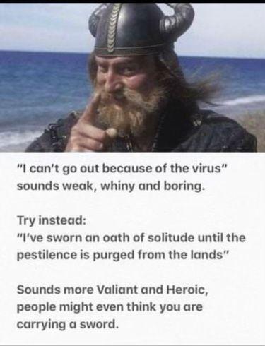 VikingQuarantine