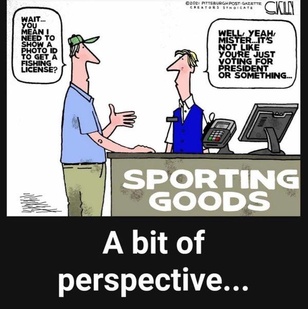 PerspectiveOnVoterID