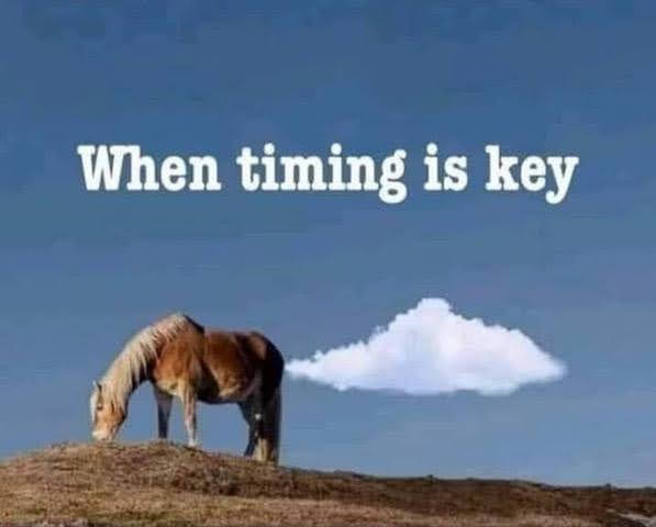 TimingIsKey