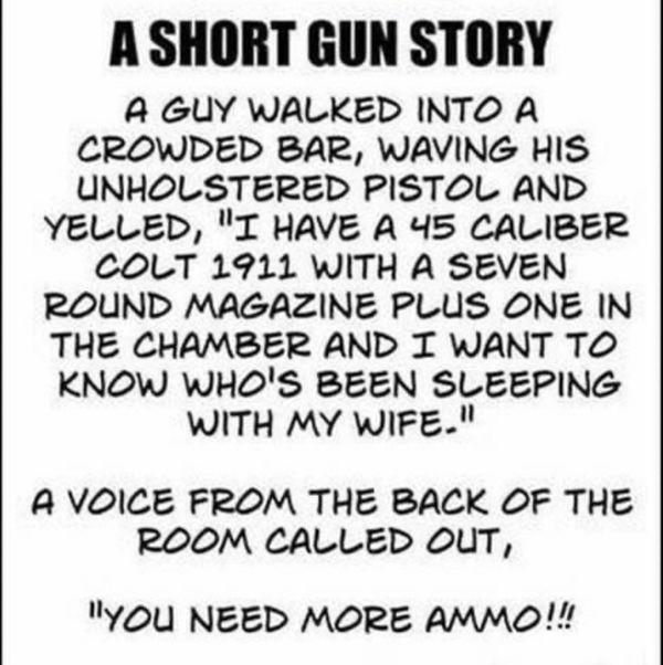 ShortGunStory