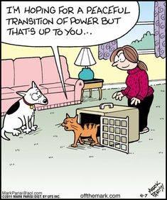 PeacefulTransitionOfPower