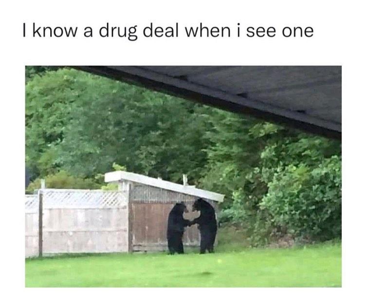 DrugDealOrProposal