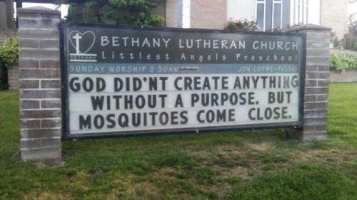 CreationOfMosquitos
